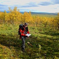 Dr. Duncan Large in Swedish Lapland. Eurasian Minerals is exploring for Gold in Sweden, as well as for Swedish Copper.