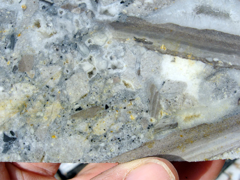 Quartz-adularia vein hosted mineralization at Neavesville.