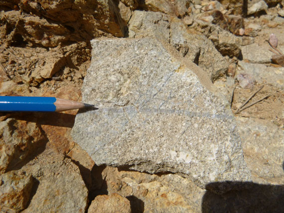 Outcropping stockwork veining of quartz and magnetite in dioritic intrusive.